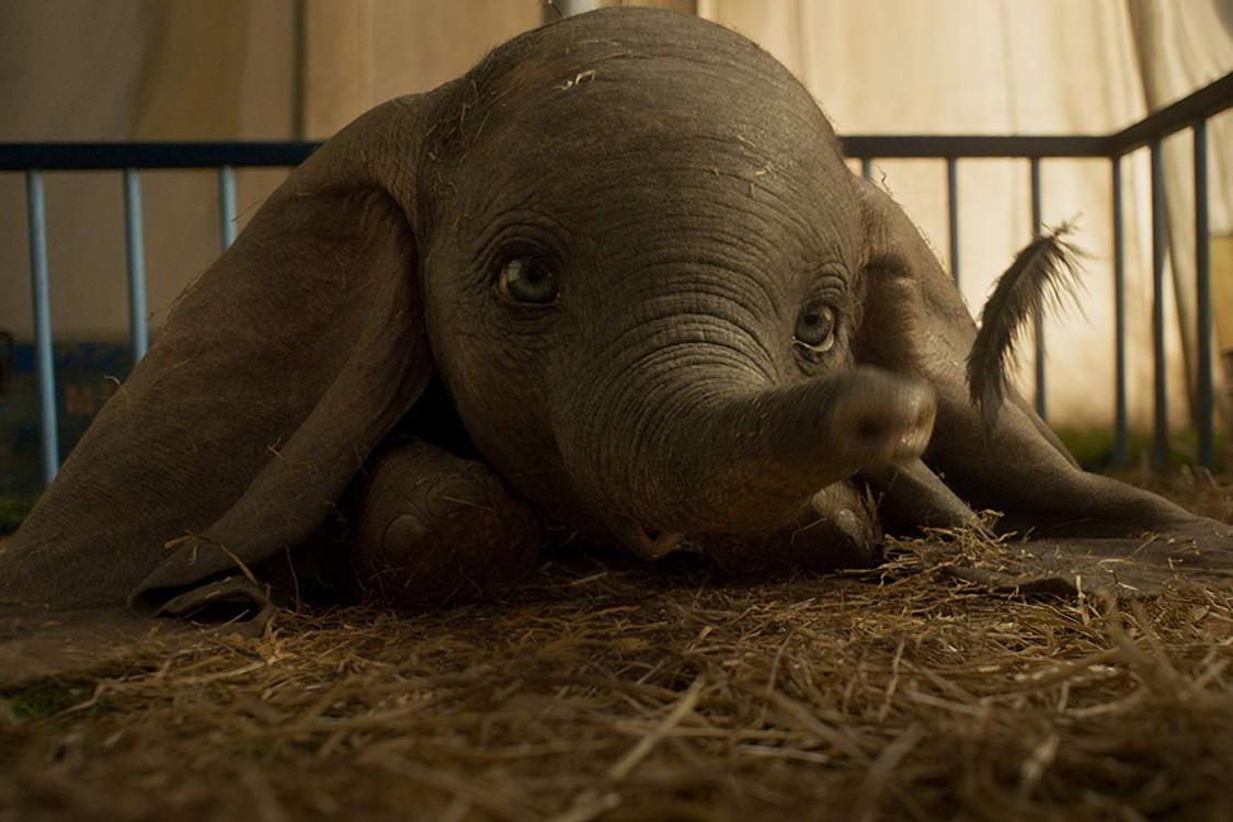 Dumbo, 6 differenze tra l'originale e il remake